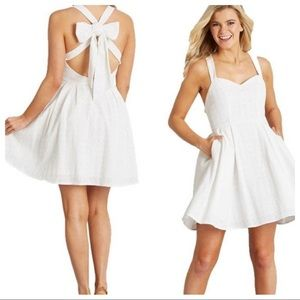 Lauren James Dresses - Lauren James Livingston Oxford Dress White New XS